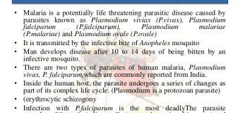 WORLD MALARIA DAY: 25TH APRIL