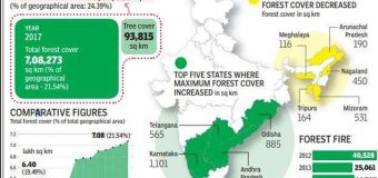 INDIA'S FOREST AND TREE COVER RISES