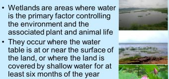 Ladakh's Tso Kar wetland complex 42nd Ramsar site