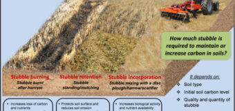 BAD AIR QUALITY: STUBBLE BURNING AND WAY OUT